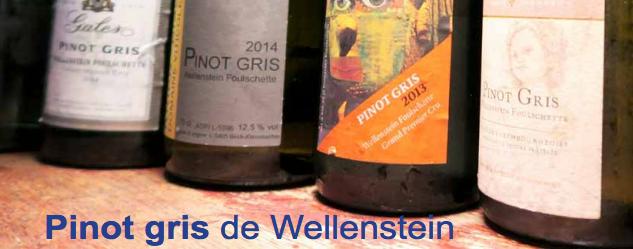 Pinot gris de Wellenstein
