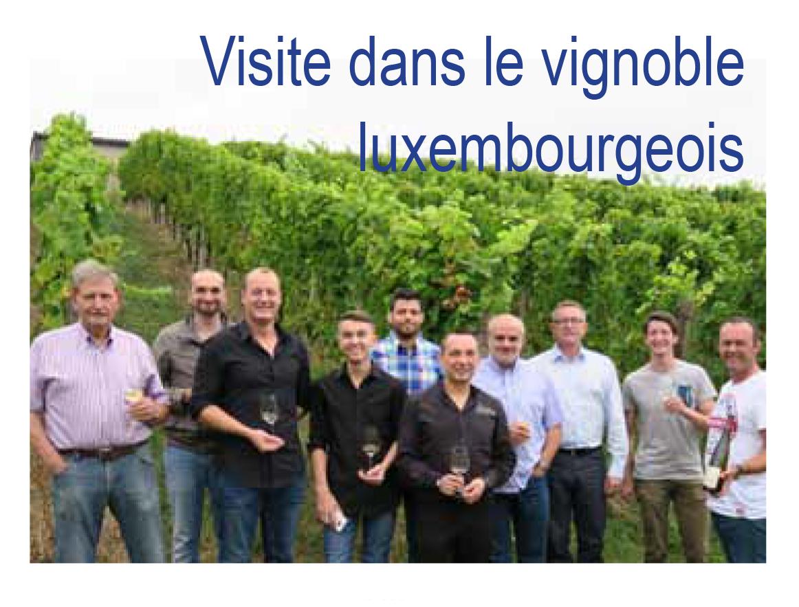Visite dans le vignoble luxembourgeois