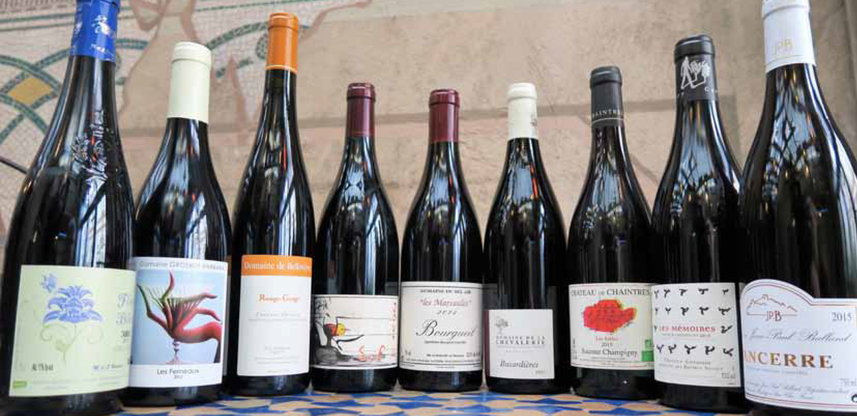 Les vins rouges de la Loire